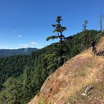Фотография Cog Wild Mountain Bike Tours