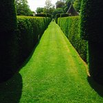 Zdjęcie Cothay Manor