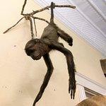 Foto de Tillamook County Pioneer Museum