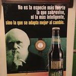 Foto de Brauer Cervecería