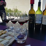 Photo of Ophorus Bordeaux Wine Day Tours