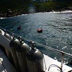 Mergulho Ilha do Arvoredo