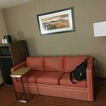 Living Room of King Suite - sofa, refrigerator, microwave, coffee