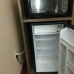 Large mini-refrigerator with larger than average freezer compartment