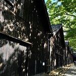 倉庫とケヤキ並木