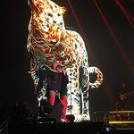 Фотография Rogers Arena