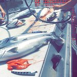 Active Angler Fishing Charters 1025 Lee Rd | French Creek Marina, Parksville, British Columbia