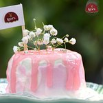Kopyor Cake - Variant Asian Cake Series