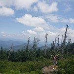 Φωτογραφία: Mount Mitchell State Park