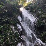 Merapoh Adventure张图片