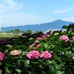 Photo of Moriyama Ashikarien Garden