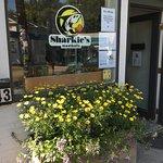 Summer flowers in full bloom outside Sharkie's.