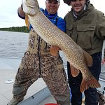 Trophy 49-inch pike caught and released at Minor Bay Lodge