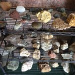 Local geology