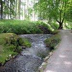 Les Jardins d'Annevoie - Picture No. 3