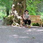 Les Jardins d'Annevoie - Picture No. 4
