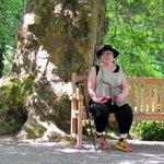 Les Jardins d'Annevoie - Picture No. 5