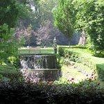 Les Jardins d'Annevoie - Picture No. 7