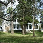 An orange plantation was once established here by the Anderson Family