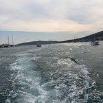 4K Travel Trogirの写真