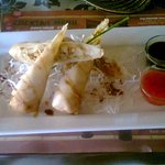 Fiji Traditional Spring Rolls with chicken