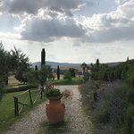 Agriturismo Le Sorbelle d'Orcia照片