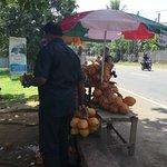 beach coconut seller