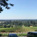 Sokol Blosser Winery resmi