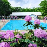 Pool is open daily 11-6 Memorial through Labor Day Weekend
