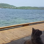 Foto de Dinghy Dock