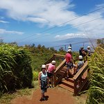 Zip line Platform and View of Lanai