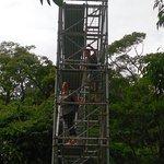 Climb up the Metal Canopy 43m High