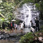 Enjoy the Waterfall and Fish Spa