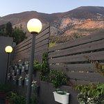 The Olive Lounge照片