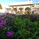 Indian Char Bagh Garden