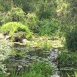 Bild från Annapolis Royal Historic Gardens