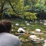 River at Mosman Gorge