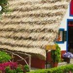 Zdjęcie Madeira For You