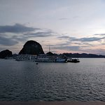 Photo of Apricot Cruise