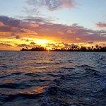 Blue Sailing – fénykép