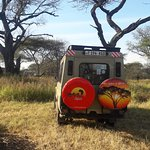 Our vehicle ready for morning game drive.