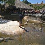 Foto di Crocodile Park