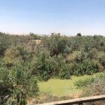 The Baptism Site Of Jesus Christ Foto