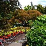 Foto de Parque de la Reina Isabel