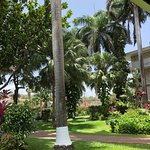 Holiday Inn Resort Montego Bay Foto