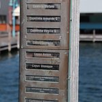The names of the fishermen