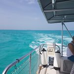Photo of Key West Extreme Adventures Shark Tours