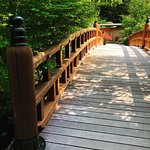 Japanese crafted wooded bridge