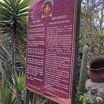 Intinan Museum照片