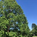 Royal Botanical Gardens resmi